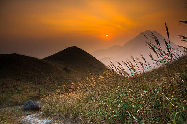 Sunset with Grasses