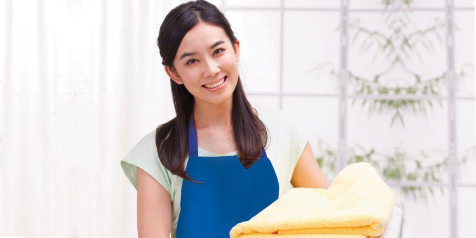 Domestic Helper