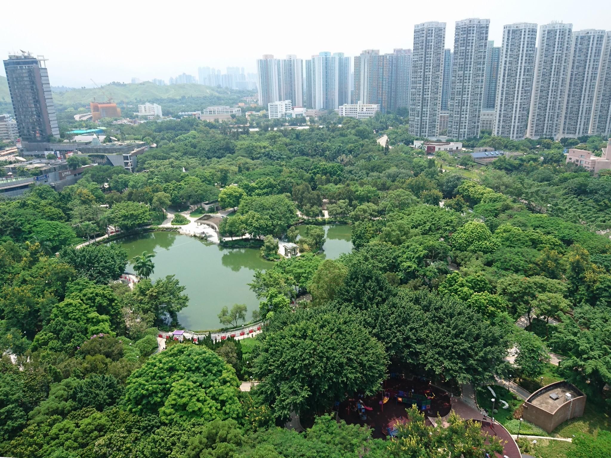 嘉湖山莊-翠湖居-天水圍公園-人工湖